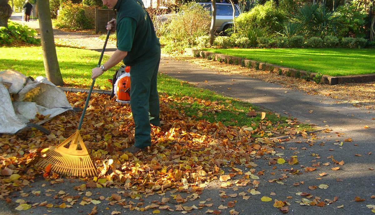 Entretien de jardin entretien de jardin limoges for Elagage entretien jardin